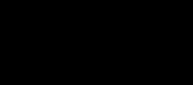"Embroidered ""II"" Logo Hoodie"